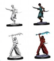 acceder a la fiche du jeu D&D Nolzur's Marvelous Miniatures - Female Human Rogue